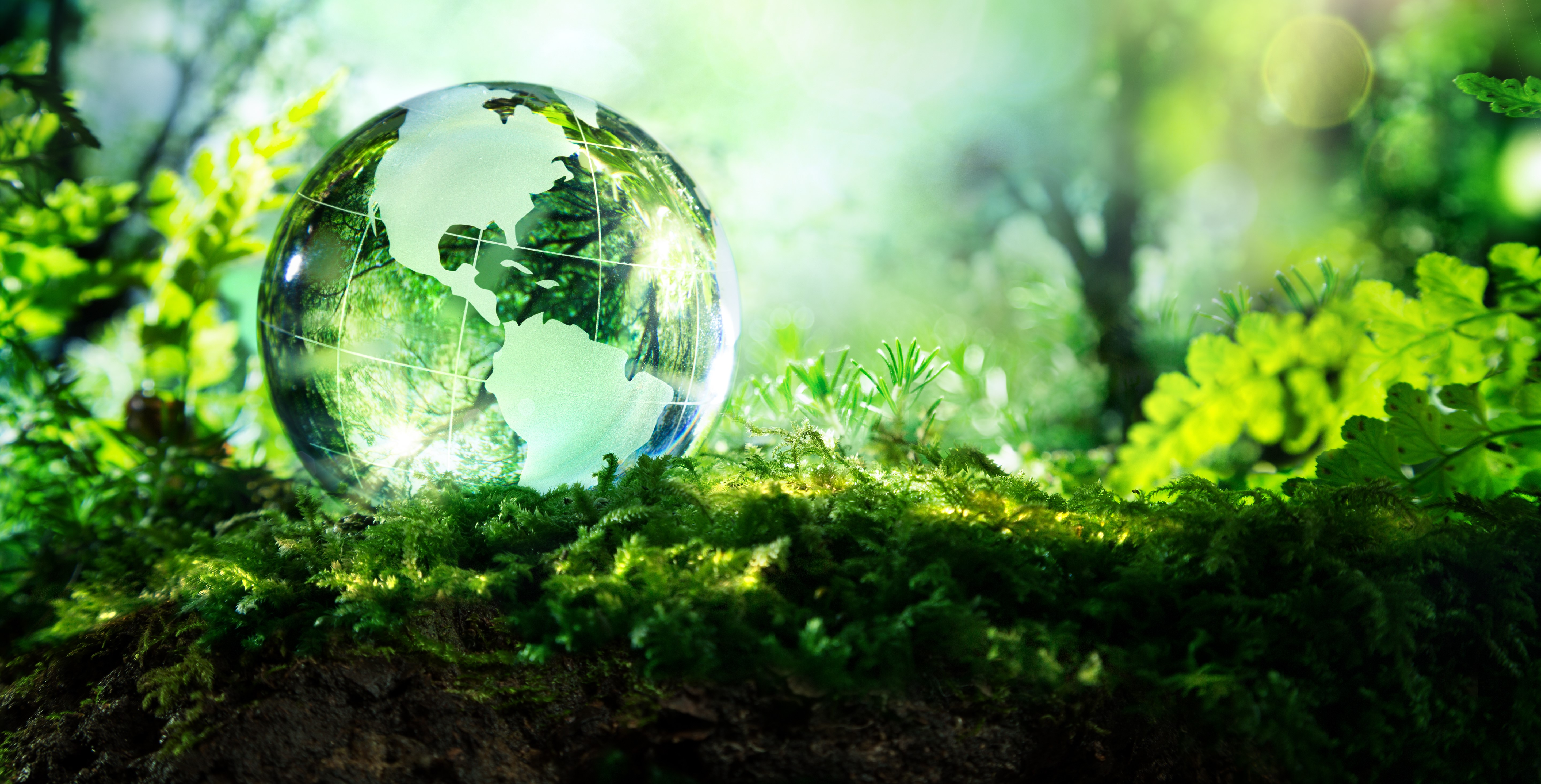tiny transparent globe of earth sits in greenery