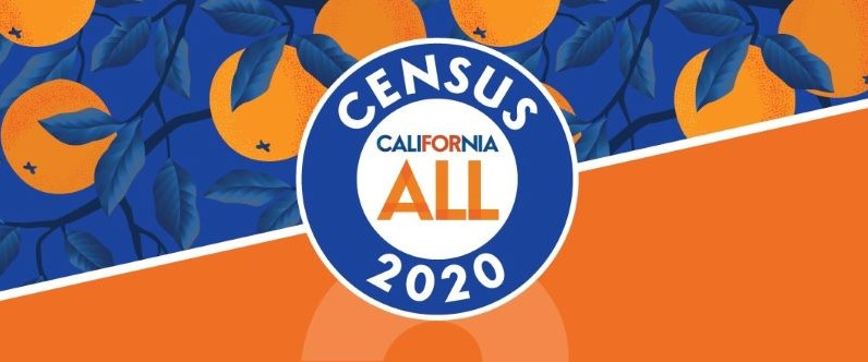 Three Ways to Complete the Census