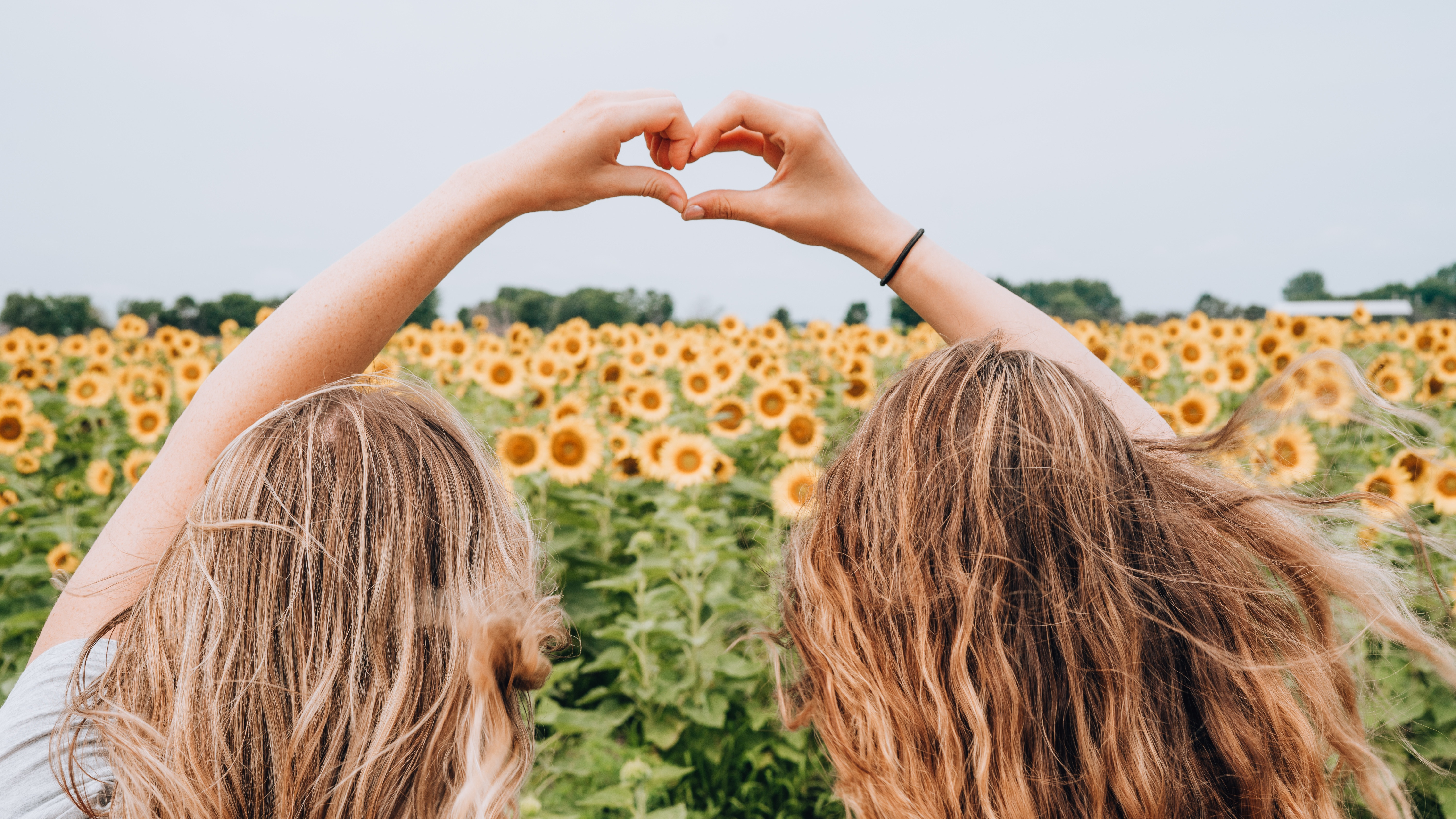 two women forming heart-shape using hands fronting sunflower field