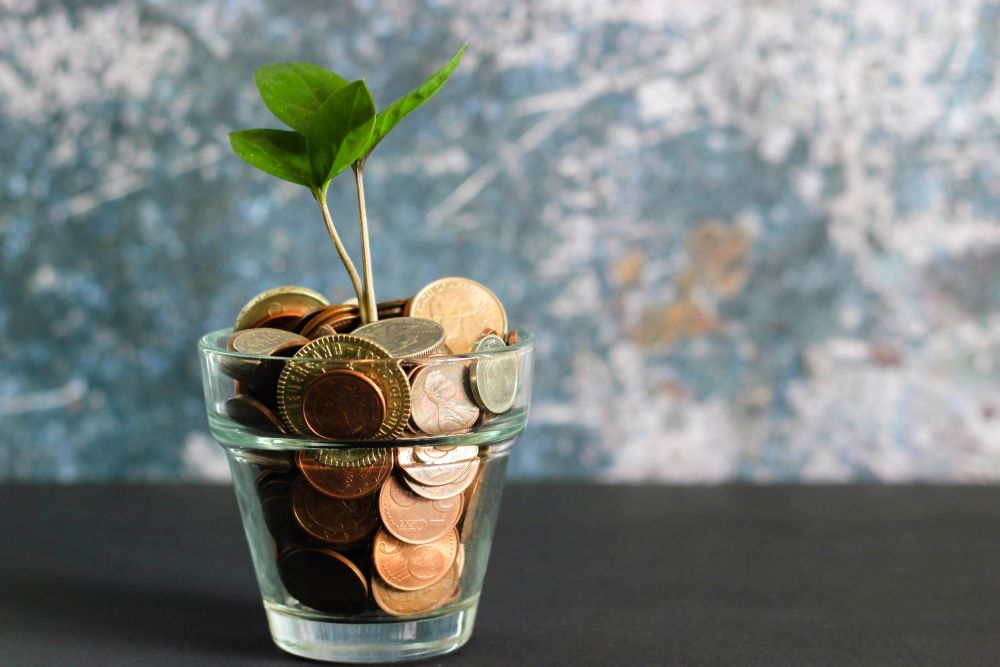 Glass planter filled with coins and new growth sprouting
