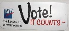 Vote it Counts Car Magnets
