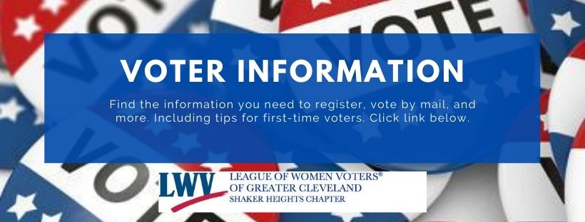 Homepage header linking to Voter Services page