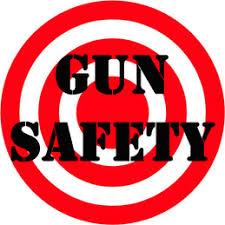 gun safety workgroup image