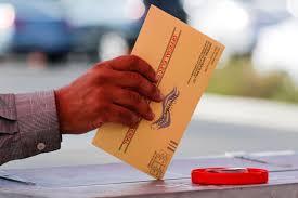 Voting Procedures in November virtual meeting