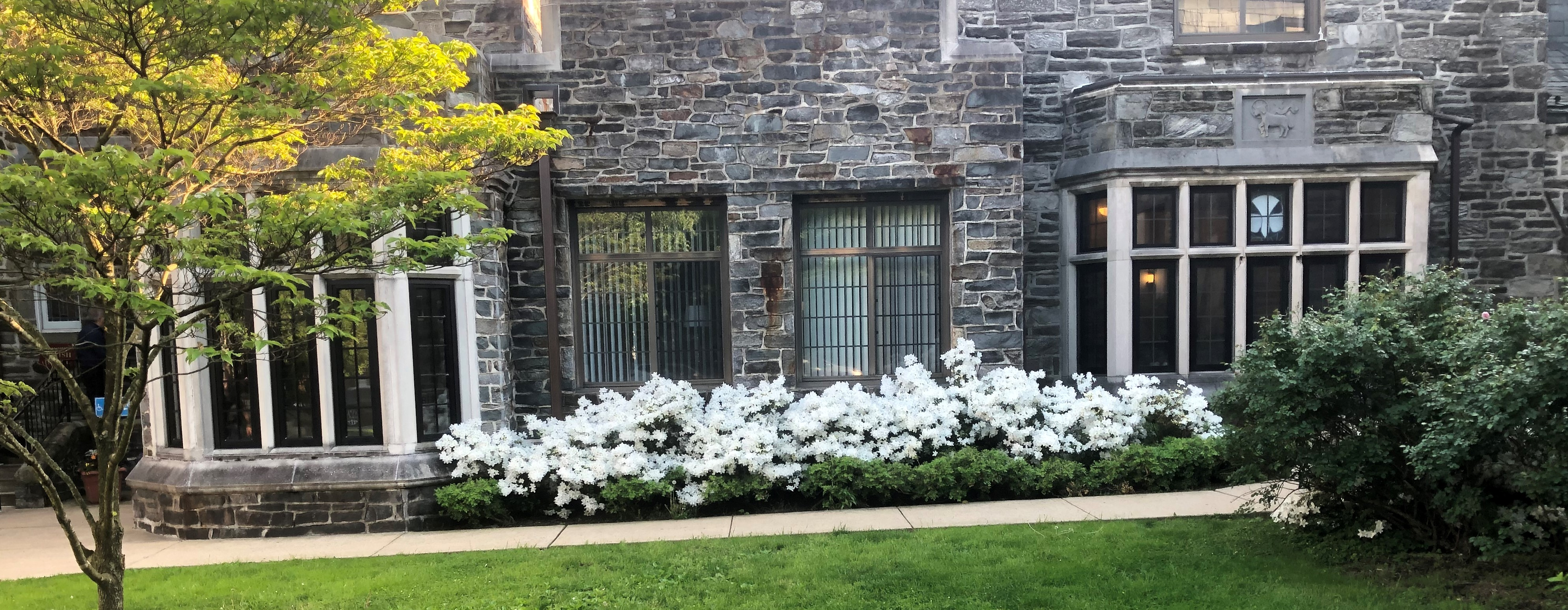 Attractive stone church building, white azalea flowers blooming in front