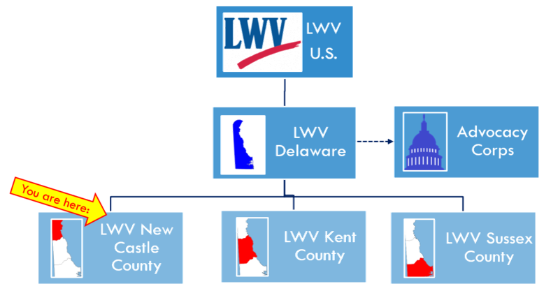 LWVNCC High-Level Org Chart