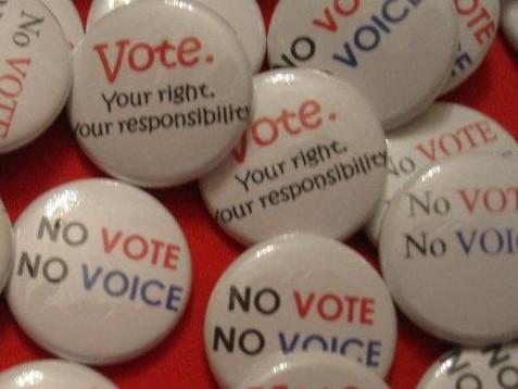 No Vote No Voice Buttons