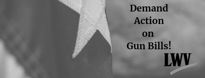 Grey Texas flag. Demand Action on Gun Bills