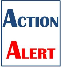 LWV Action Alert Logo