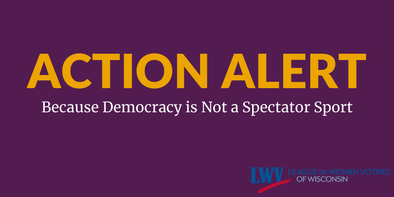 "Graphic with text, ""Action Alert: Because Democracy is Not a Spectator Sport"""