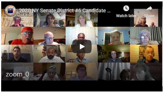 2020 NY Senate 6 Zoom Meeting