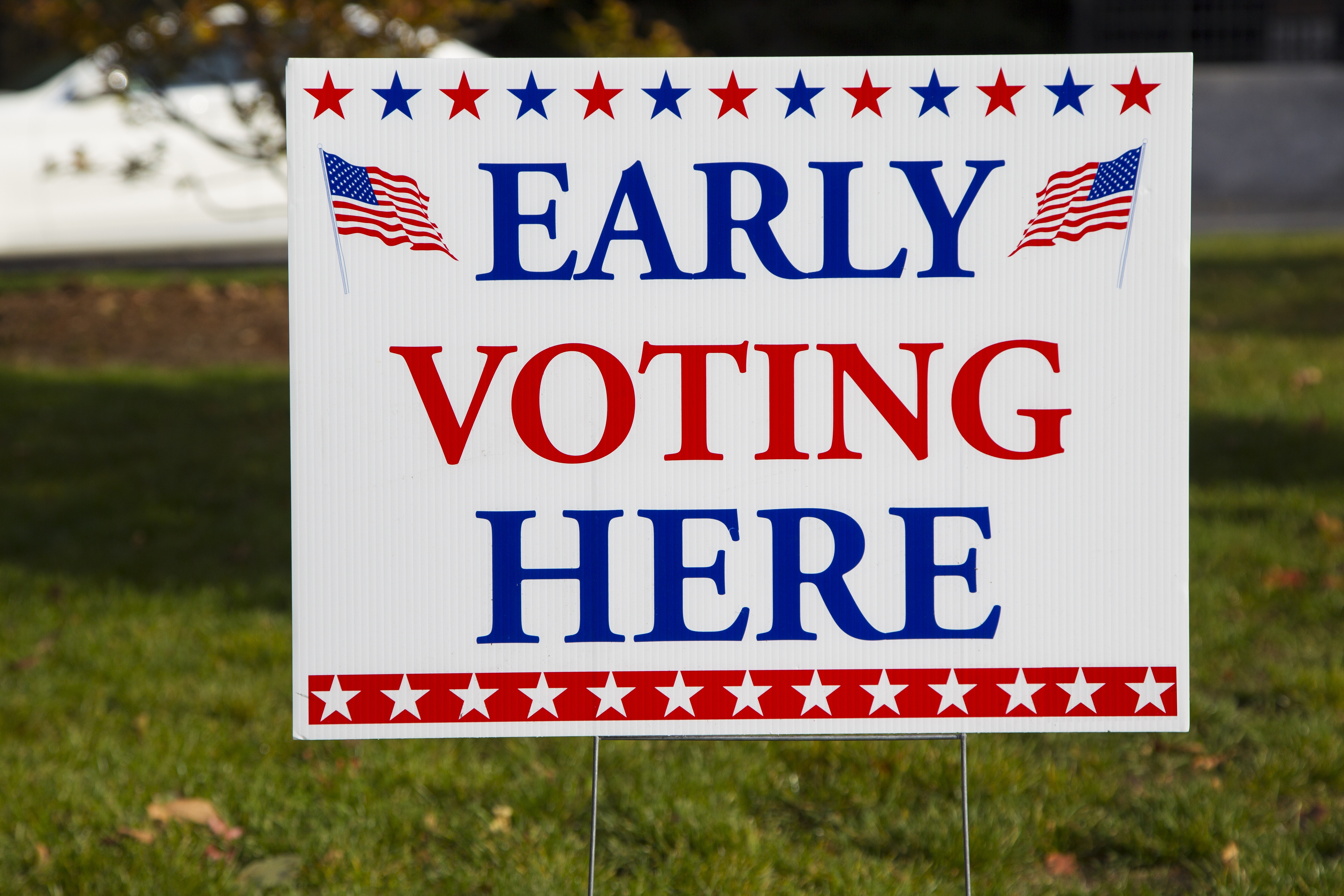 Early Voting in NYS