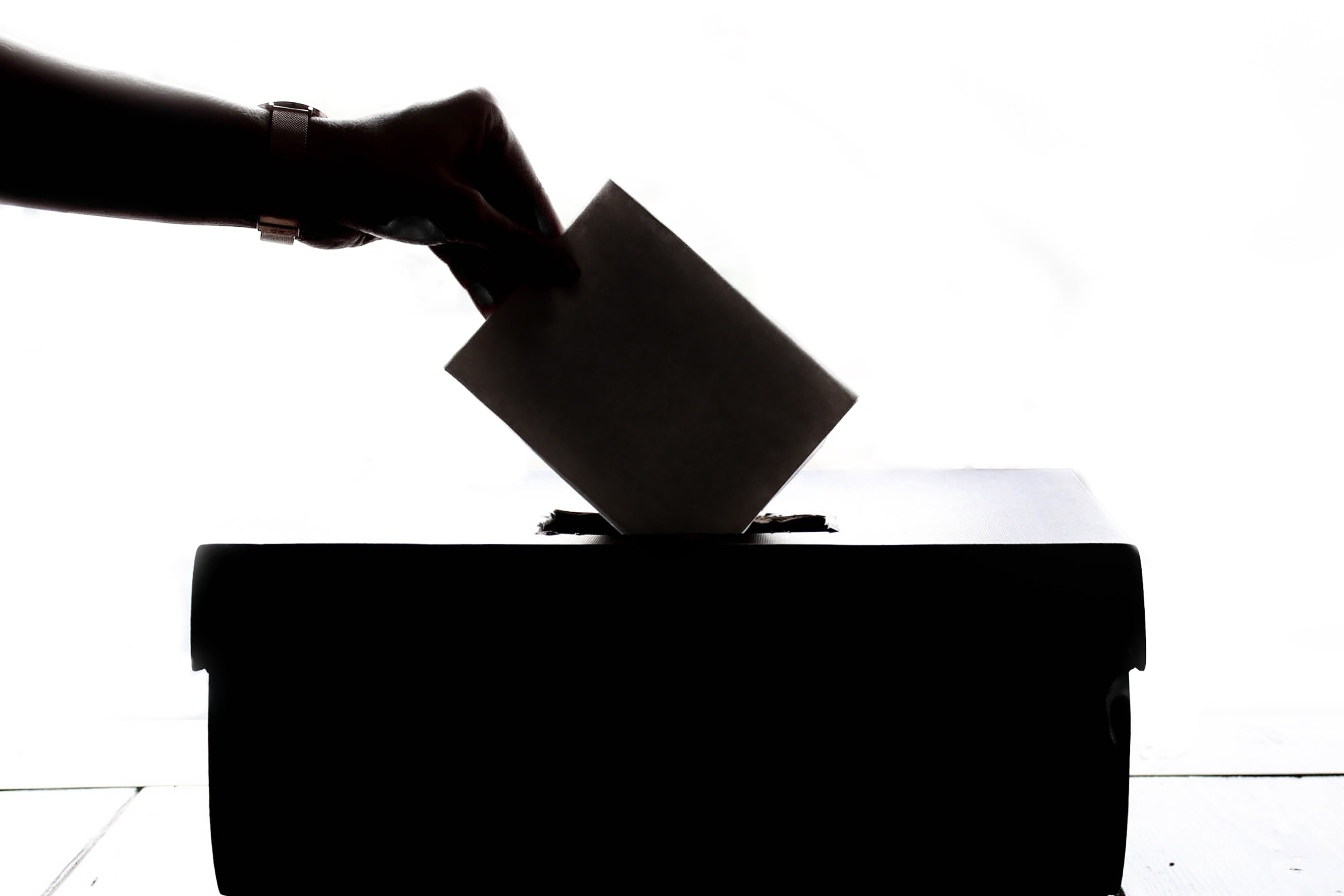 Silhouette of Voter Casting a Ballot