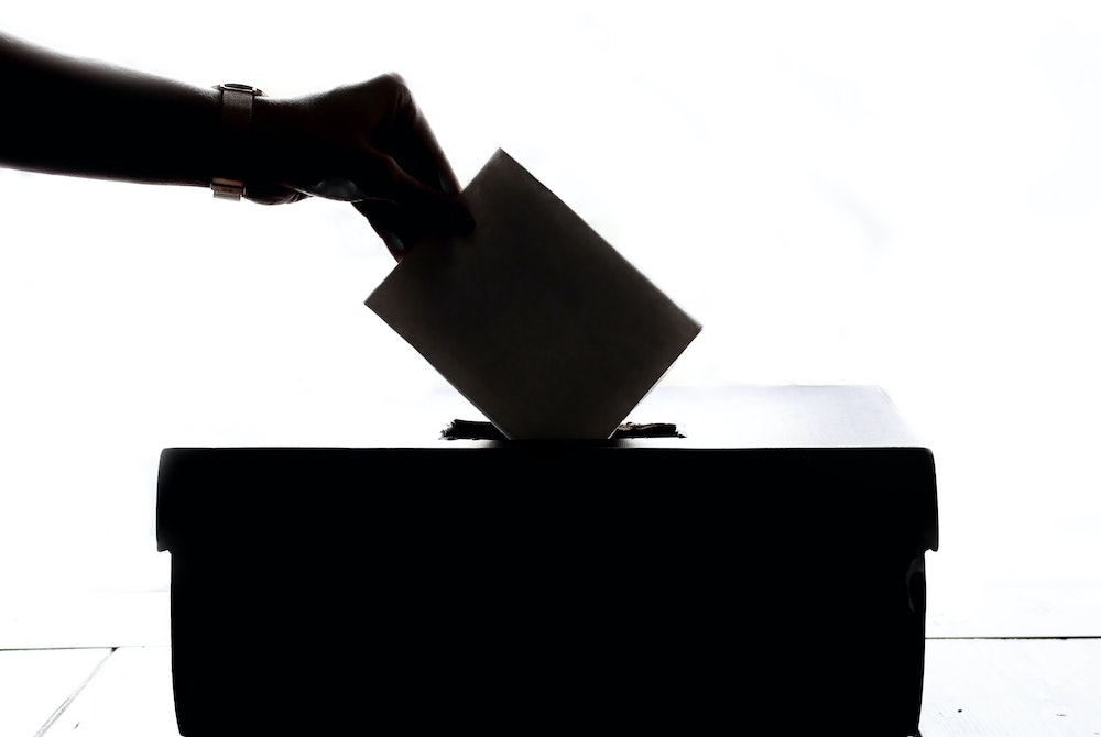 WomanVoting
