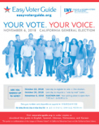 2018-11-06_easy_voter_cover.