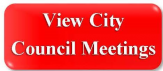 View City Council Meetings