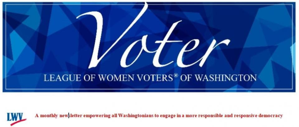 banner of the WA State Voter