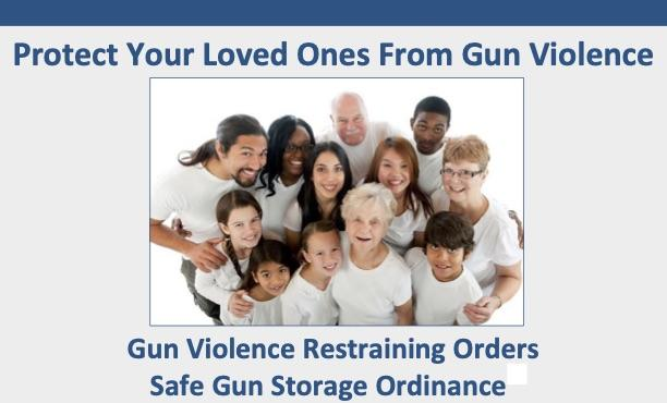 Protect Your Family from Gun Violence