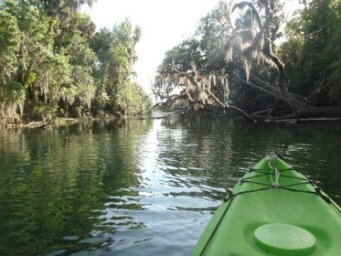 LWV Florida Vacation trip picture--kayak on river