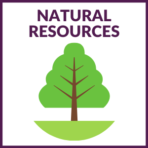 """square graphic that says """"NATURAL RESOURCES"""" with a tree below"""" and a purple border around the graphic."""