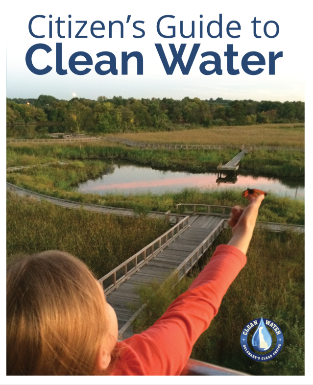 Citizen's Guide to Clean Water