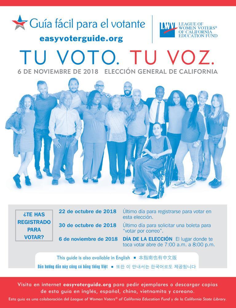 Easy Voter Guide in Spanish