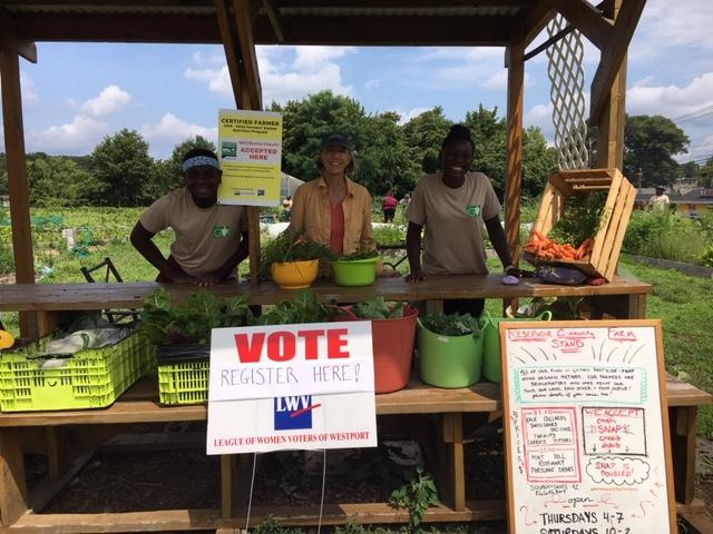 Green Village - Vote