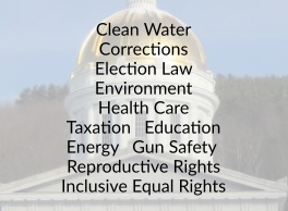Clean Water Corrections Election Law Environment Health Care Taxation Education Energy Gun Safety Reproductive Rights Inclusive Equal Rights