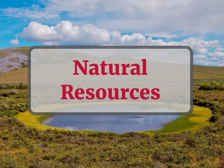 Natural Resources - text overlay on stock photo of freshwater marsh in Alaska, NY