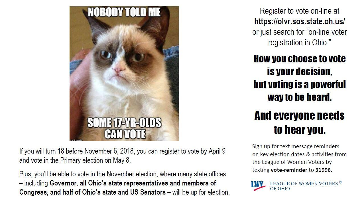 grumpy cat says Nobody told me some 17-year-olds can vote