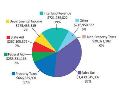 Suffolk County Government Revenue