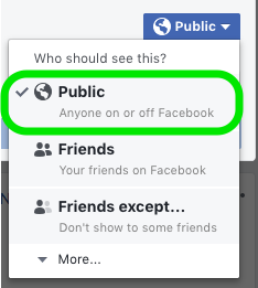 Example of the Facebook Privacy Menu