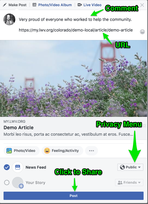 Example of the Facebook share window highlighting the Privacy Menu and Post button