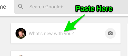 "Example of Google Plus ""What's new with you?"" share"