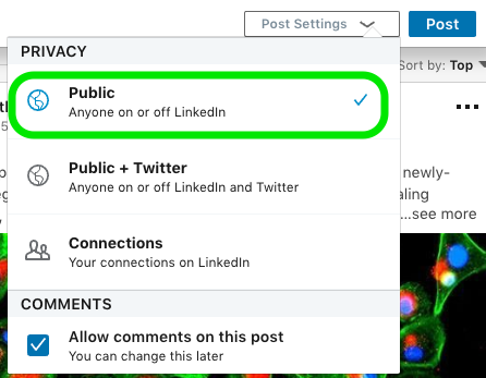 Example of the privacy menu on LinkedIn