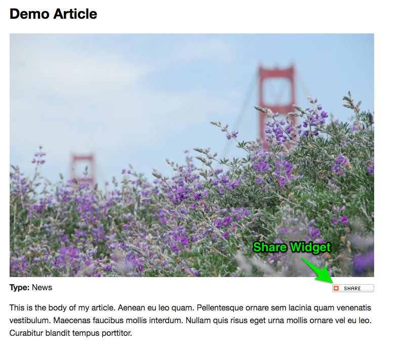 Example showing the location of the Share Widget on the right below the Main Image and above the body text.