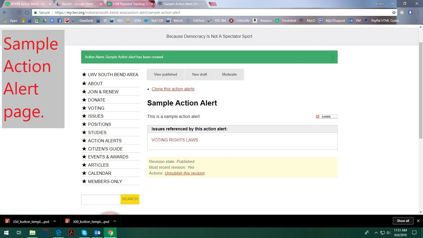 Create Action Alert - Sample Action Alert created