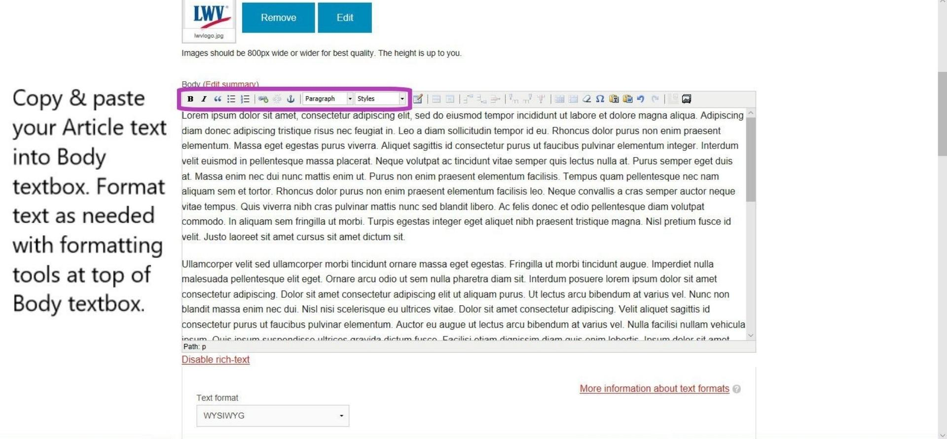 Create Article - Copy/paste article text into Body