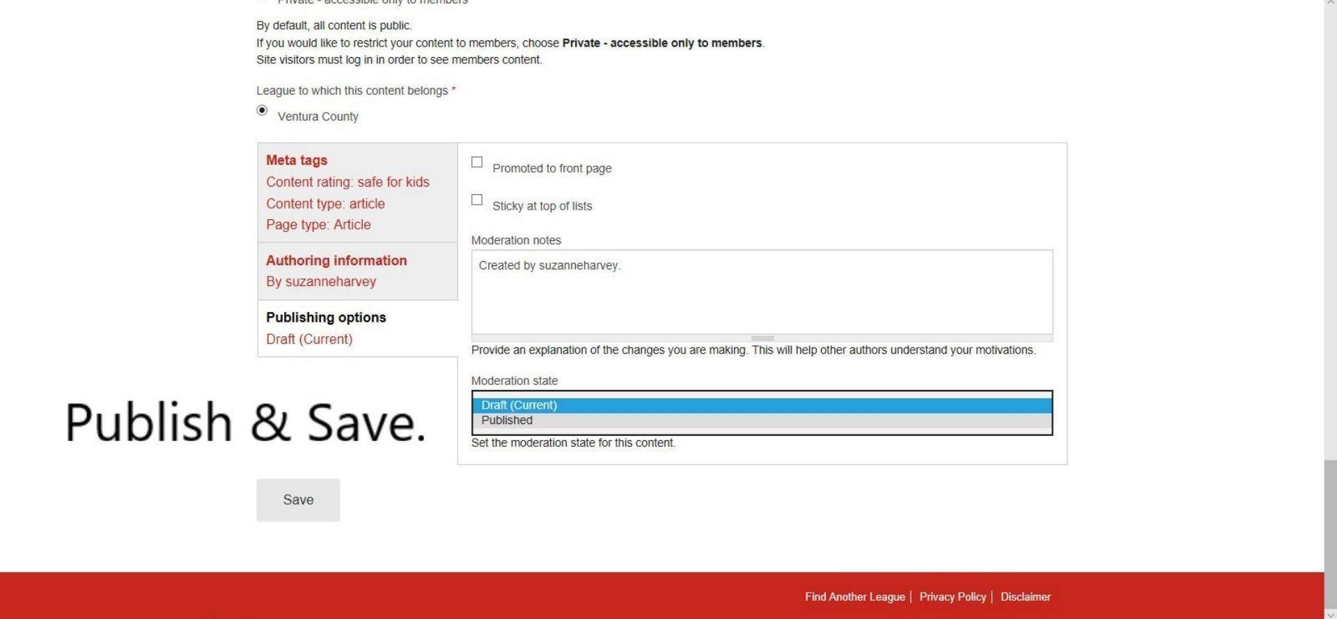 Create Article - publishing options