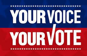 Your Voice | Your Vote
