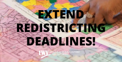 Extend redistricting deadlines, amicus brief filed