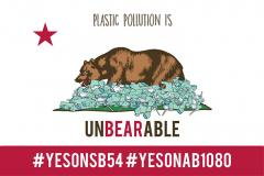AB 1080, SB 54, plastic waste, environment, California, pollution