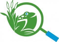 ODC Logo