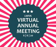 virtual general meeting