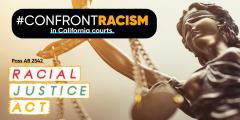 AB 2542 Racial Justice Act