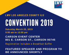 County Convention 2019
