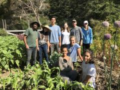 Victory Gardens for Peace