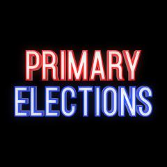 Primary Election in 3D