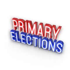 "The words ""Presidential Primary"" in 3D"