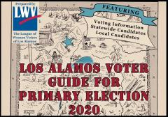 Voters Guide Primary Election 2020 Cover 800x559